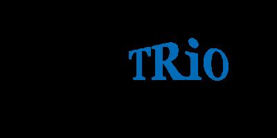Kundenreferenz DWD TRIO Immobilien-Vermittlung